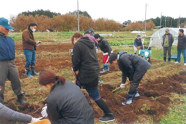 少年と大学生との絆を深めた農業体験
