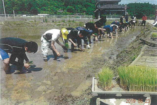 絆を深めた稲作体験