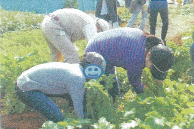 農業体験活動で少年の居場所作りに貢献