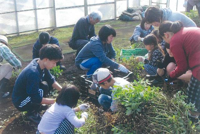 農業体験で家族の絆に一役